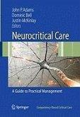 Neurocritical Care (eBook, PDF)