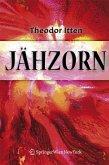 Jähzorn (eBook, PDF)