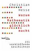 Warum Mathematik glücklich macht (eBook, ePUB)