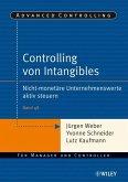 Controlling von Intangibles (eBook, ePUB)