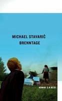 Brenntage (eBook, ePUB) - Stavaric, Michael