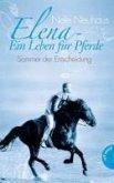 Sommer der Entscheidung / Elena - Ein Leben für Pferde Bd.2 (eBook, ePUB)