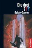 Geister-Canyon / Die drei Fragezeichen Bd.124 (eBook, ePUB)