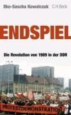 Endspiel (eBook, ePUB)