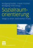 Sozialraumorientierung (eBook, PDF)