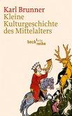 Kleine Kulturgeschichte des Mittelalters (eBook, ePUB)