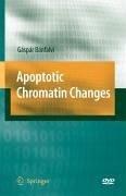 Apoptotic Chromatin Changes (eBook, PDF) - Bánfalvi, Gáspár