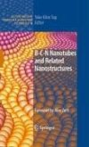 B-C-N Nanotubes and Related Nanostructures (eBook, PDF)