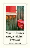 Ein perfekter Freund (eBook, ePUB)