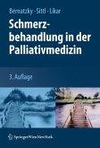 Schmerzbehandlung in der Palliativmedizin (eBook, PDF)