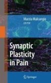 Synaptic Plasticity in Pain (eBook, PDF)