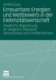 Erneuerbare Energien und Wettbewerb in der Elektrizitätswirtschaft (eBook, PDF)