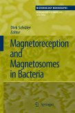 Magnetoreception and Magnetosomes in Bacteria (eBook, PDF)