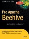 Pro Apache Beehive (eBook, PDF)