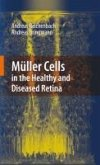 Müller Cells in the Healthy and Diseased Retina (eBook, PDF)