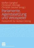Parlamente, Agendasetzung und Vetospieler (eBook, PDF)