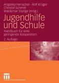 Jugendhilfe und Schule (eBook, PDF)