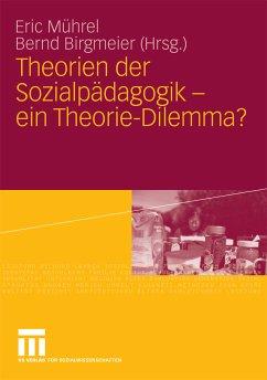 Theorien der Sozialpädagogik - ein Theorie-Dilemma? (eBook, PDF)
