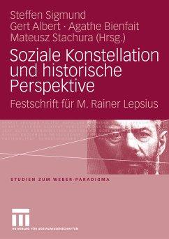 Soziale Konstellation und historische Perspektive (eBook, PDF)