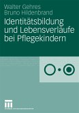 Identitätsbildung und Lebensverläufe bei Pflegekindern (eBook, PDF)