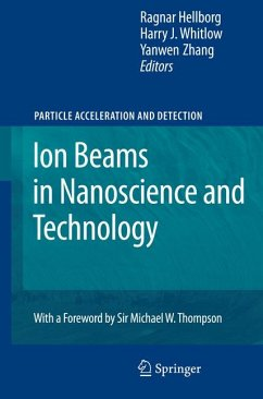 Ion Beams in Nanoscience and Technology (eBook, PDF)