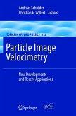 Particle Image Velocimetry (eBook, PDF)