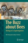 The Buzz about Bees (eBook, PDF)