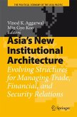 Asia's New Institutional Architecture (eBook, PDF)