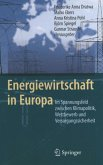Energiewirtschaft in Europa (eBook, PDF)
