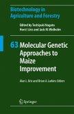 Molecular Genetic Approaches to Maize Improvement (eBook, PDF)