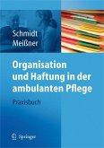 Organisation und Haftung in der ambulanten Pflege (eBook, PDF)