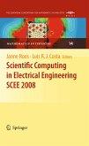 Scientific Computing in Electrical Engineering SCEE 2008 (eBook, PDF)