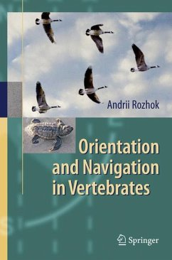 Orientation and Navigation in Vertebrates (eBook, PDF) - Rozhok, Andrii