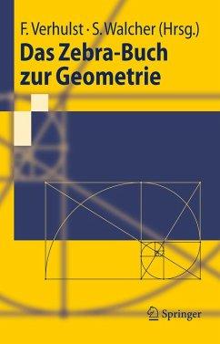 Das Zebra-Buch zur Geometrie (eBook, PDF)