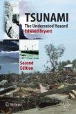 Tsunami (eBook, PDF)