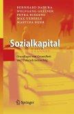 Sozialkapital (eBook, PDF)