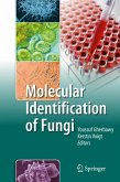 Molecular Identification of Fungi (eBook, PDF)