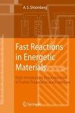 Fast Reactions in Energetic Materials (eBook, PDF)
