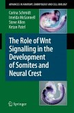 The Role of Wnt Signalling in the Development of Somites and Neural Crest (eBook, PDF)