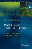 Particle Metaphysics (eBook, PDF)