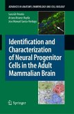 Identification and Characterization of Neural Progenitor Cells in the Adult Mammalian Brain (eBook, PDF)