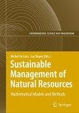 Information Technologies in Environmental Engineering (eBook, PDF)