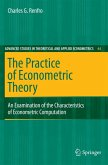 The Practice of Econometric Theory (eBook, PDF)