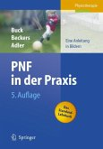 PNF in der Praxis (eBook, PDF)