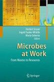 Microbes at Work (eBook, PDF)