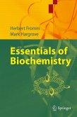 Essentials of Biochemistry (eBook, PDF)