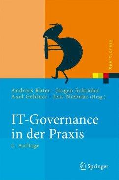 IT-Governance in der Praxis (eBook, PDF)