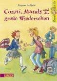 Conni, Mandy und das große Wiedersehen / Conni & Co Bd.6 (eBook, ePUB)