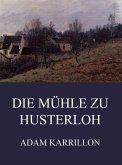Die Mühle zu Husterloh (eBook, ePUB)