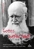 Gottes sanfter Rebell (eBook, ePUB)